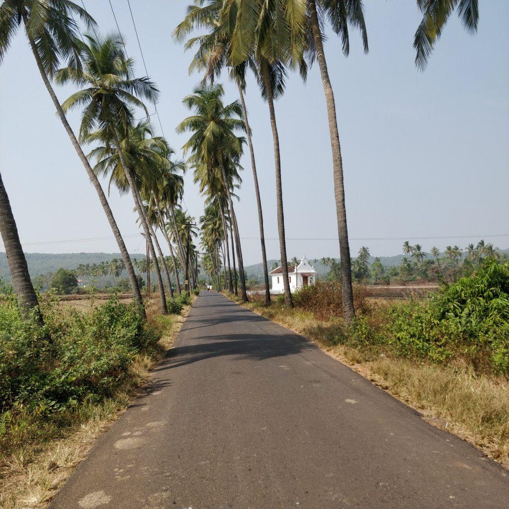 Anjuna yolları