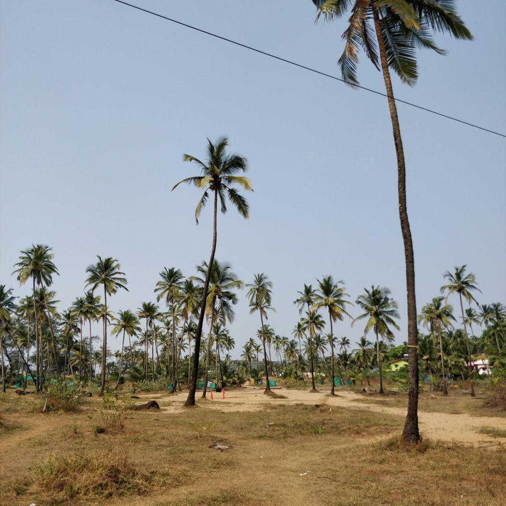 Kuzey Goa manzaraları