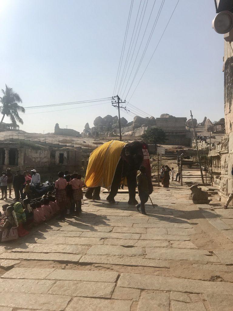 Virupaksha Tapınağı'nda yer alan fil