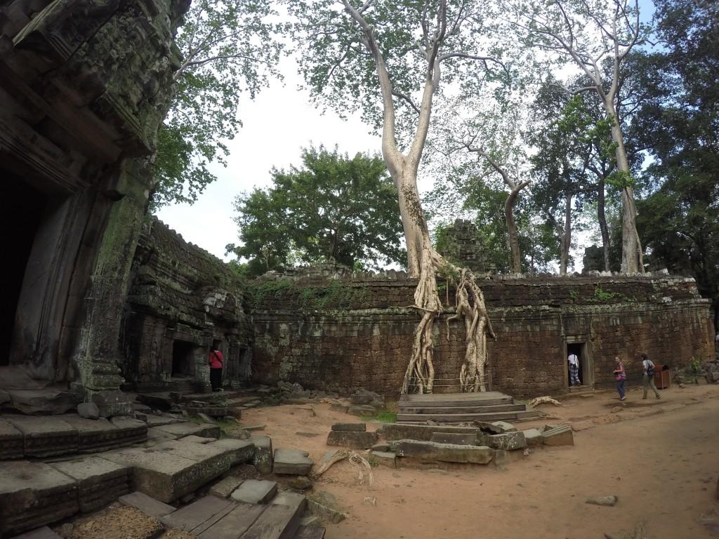 tomb rider temple